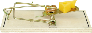 Mousetrap photo - Can you patent an idea? - Patent Attorney Long Island